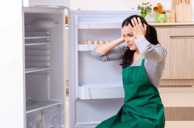 Pieces detachees frigo
